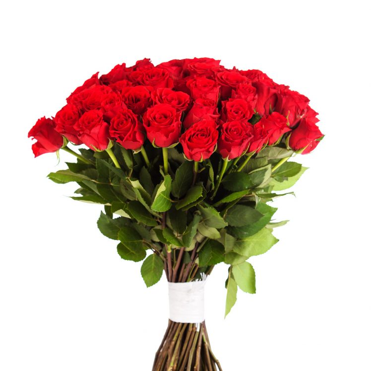 Big bouquet of red roses isolated on white background